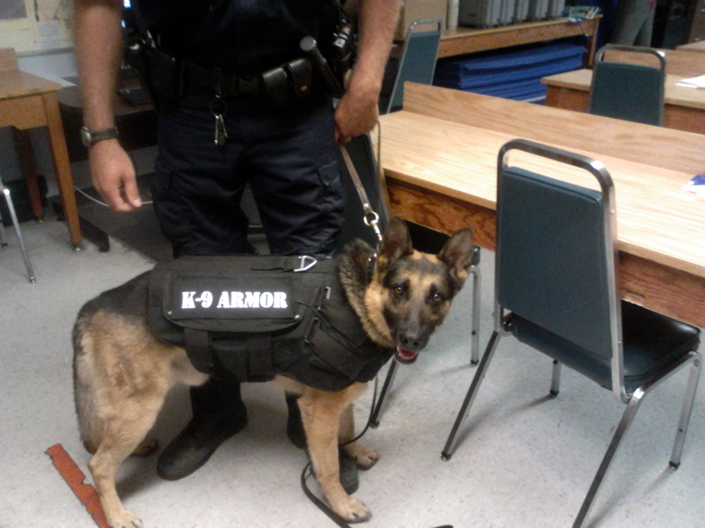 K-9 Armor is proud to protect CHP K9 Dax