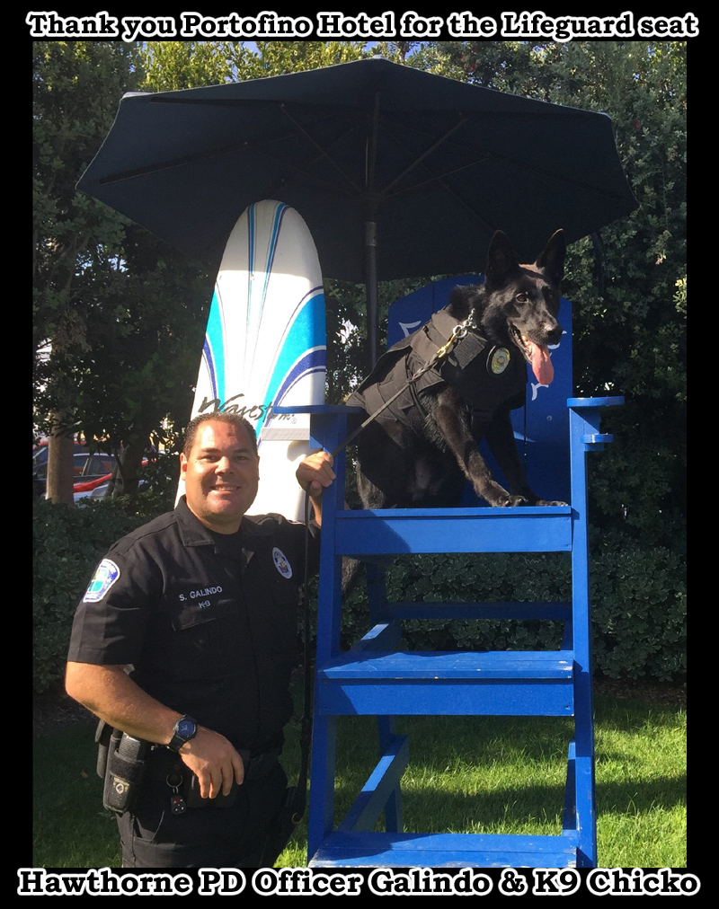 Hawthorne PD Officer Galindo and K9 Chicko. Thank you Portofino Hotel for the Lifeguard Chair for Chicko to keep watch!