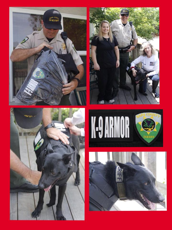Thank you Dr. Gold and Nadya, Veterinary Assistant at St Helena Veterinary Hospital for treating our K9 Heroes and donating for St. Helena PD K9 Djino and Napa County Sheriff K9 Nash.