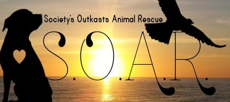 Click to visit SOAR Animal Rescue on Facebook